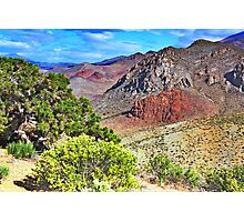 Nevada Colors Photographic Print
