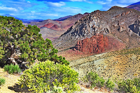 Nevada Colors by SB  Sullivan