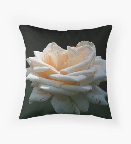 Rose of Summer Throw Pillow