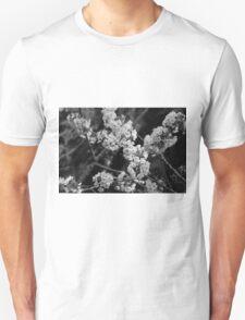 Cherry Blossom (BW) T-Shirt
