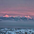 Sunset Glow on La Sal Mountains - Moab, Utah by Mary Warner