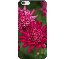 Red flowers Leith Park Victoria 201510300535 iPhone Case/Skin