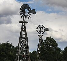 Two Windmills - Pie Town, New Mexico by Mary Warner