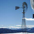 Windmill at Blue Sky Basin - Vail, Colorado by Mary Warner