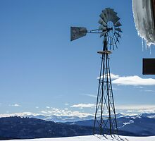Windmill at Blue Sky Basin - Vail, Colorado by Mary Warner