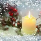 Season's greetings by Lyn Evans