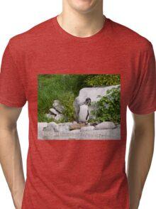 Humboldt Penguin Tri-blend T-Shirt