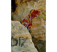 Dinosaur! Photographic Print