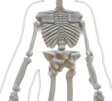 hanging skeleton Sticker
