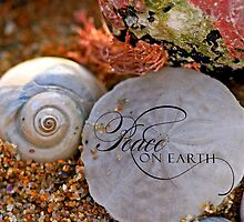 Sand Dollar Peace by Sevastra