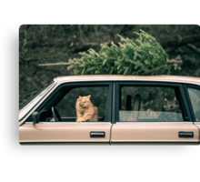 Volvo Christmas Cats Canvas Print