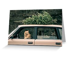 Volvo Christmas Cats Greeting Card