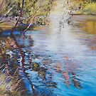&#x27;Swirls &amp; Ripples - Goulburn River&#x27; by Lynda Robinson