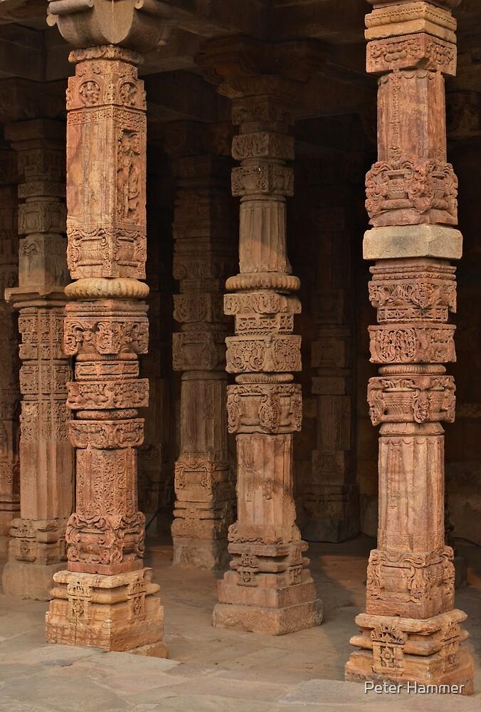 Columns at Qutb Minar by Peter Hammer