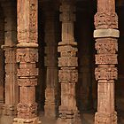 Columns at Qutb Minar by Peter Hammer