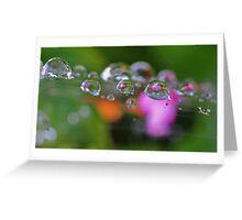 Garden Pearls Greeting Card