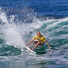 The Art Of Surfing In Hawaii 19 by Alex Preiss