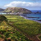 Macquarie Island &amp; the Research Station by Carole-Anne