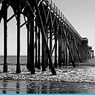 Pier at San Simeon, California by philw