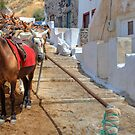 Santorini - Greece by Joana Kruse