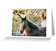Bright Morning Beauty Greeting Card