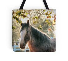 Bright Morning Beauty Tote Bag