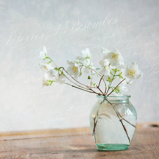 Lightness by Jill Ferry