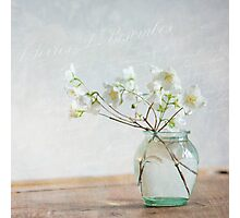 Lightness Photographic Print