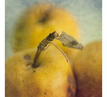 Grunge apples Photographic Print