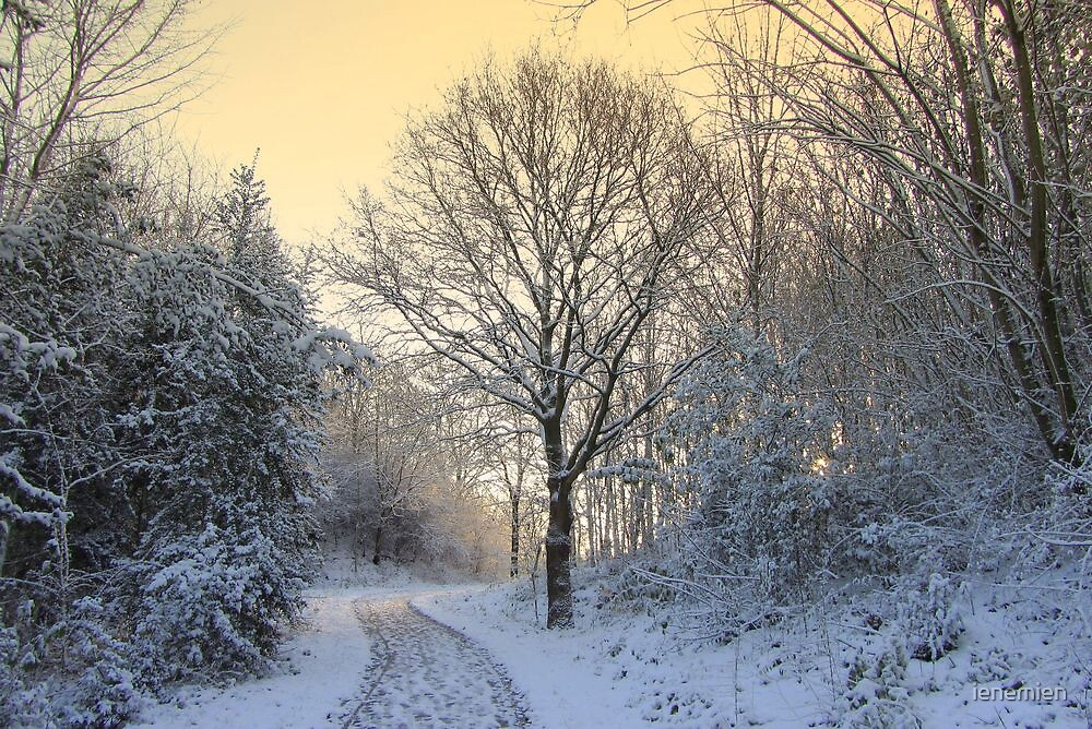 First Snow this Winter! by ienemien