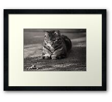 He's behind you Framed Print
