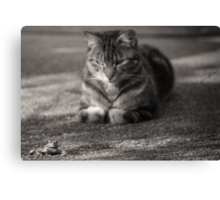 He's behind you Canvas Print