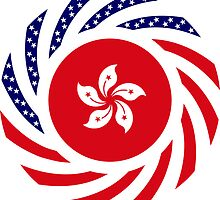 Hong Kong American Multinational Patriot Flag Series by Carbon-Fibre Media