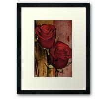 Double roses Framed Print