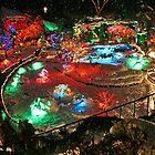 BUTCHART Gardens : Winter Wonderland by AnnDixon
