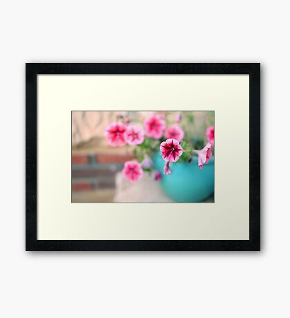 Pink Patunia Framed Print