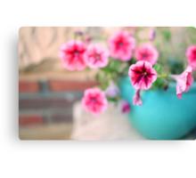 Pink Patunia Canvas Print