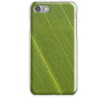 Palm Tree Leaf iPhone Case/Skin