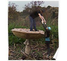 Fungi Heads Poster