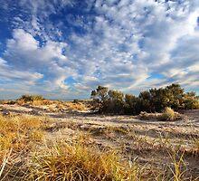 West Beach Adelaide by Kelvin  Wong