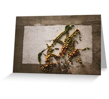 Autumn didn't want to be framed.......  Greeting Card