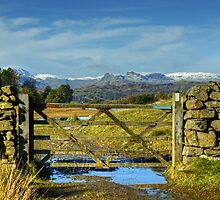 A Langdale View Revisited by Jamie  Green
