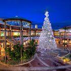Christmas Shopping by manateevoyager