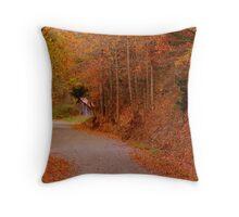 Falling Water Falls Road Throw Pillow