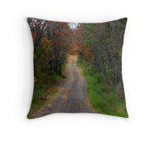 Its A Long Road Home Throw Pillow