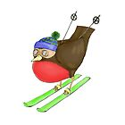 Skiing Robin by Jennifer Kilgour