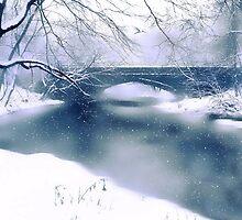 Winter Haiku by Jessica Jenney