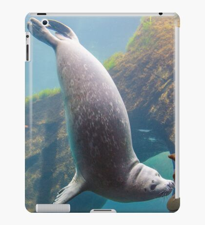 Harbor Seal iPad Case/Skin