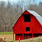 Another Red Barn 3 by michaelasamples