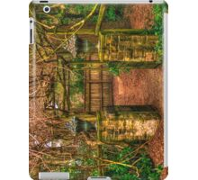 Mount Wilson IPAD COVER #4 iPad Case/Skin